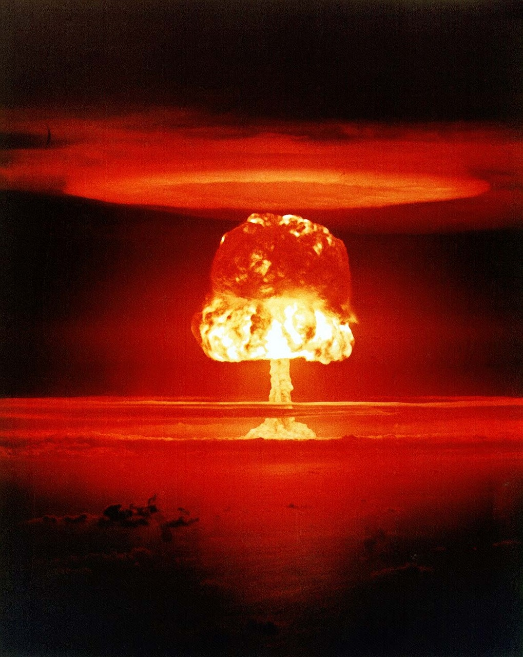 Never again should this terrible nuclear weapon