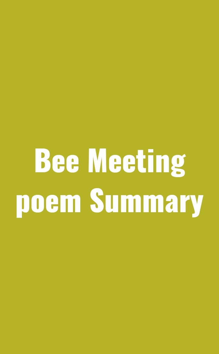 Bee Meeting Poem Summary