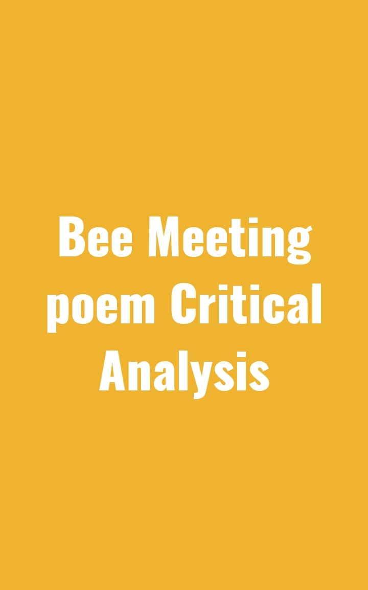 Bee Meeting Critical Analysis